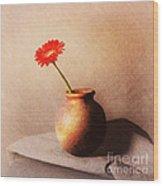 Gerbera In Stone Vase Wood Print