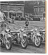 German Chariots At Potsdam Wood Print