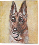 German Shepard Portrait Lala Wood Print