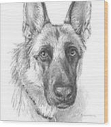 German Shepherd Face Pencil Portrait Wood Print