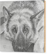 German Shepherd Wood Print