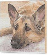 German Shepherd Laying Watercolor Portrait Wood Print