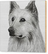 German Shepherd Wood Print by Lorraine Foster