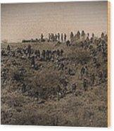 Geronimo's Band Of Warriors 1886-2012 Wood Print