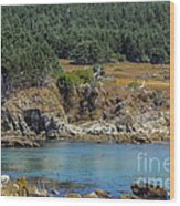 Gerstle Beach Wood Print