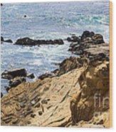 Gerstle Coastline Wood Print