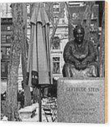 Gertrude Stein Wood Print by Joanna Madloch