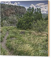 Get Off The Road And Enjoy Nature Wood Print