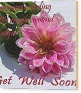 Get Well Soon - Louise Dahlia - Pink Flower Wood Print