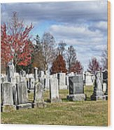 Gettysburg National Cemetery Wood Print by Brendan Reals