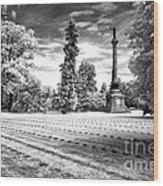 Gettysburg Soldier's Cemetery Wood Print
