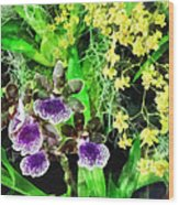 Geyser Jaimie And Golden Fantasy Orchids Wood Print