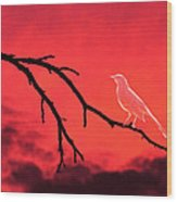 Ghost Bird Wood Print