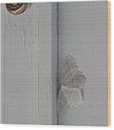 Ghost Doorbell Moth Wood Print