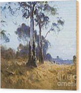 Ghost Gum At Kangaroo Flat Wood Print