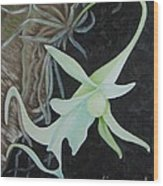 Ghost Orchid On A Palm Tree Wood Print