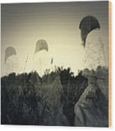Ghost Stories Wood Print by Scott Hovind