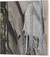 Ghost Story 2 Wood Print