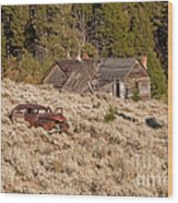 Ghost Town Remains Wood Print