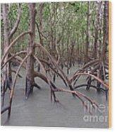 Ghostly Mangroves Wood Print