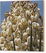 Giant Bloom Wood Print