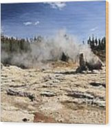 Giant Geyser Group Wood Print