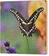 Giant Swallowtail Butterfly Photo-painting Wood Print