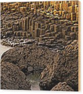 Giants Causeway, Antrim Coast, Northern Wood Print