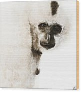 Crested Gibbon #1 Wood Print