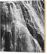 Gibbon Falls Wood Print by Bill Gallagher