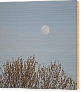 Gibbous Nature Wood Print