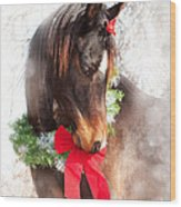 Gift Horse Wood Print by Sari ONeal