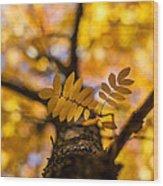 Gilded Wood Print