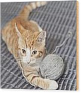 Ginger Cat With Yarn Ball Wood Print