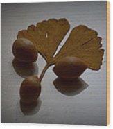 Gingko 2 Wood Print