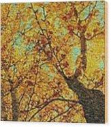 Ginkgo Tree  Wood Print