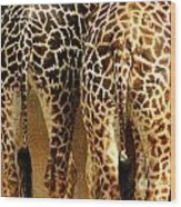 Giraffe Butts 1 Wood Print
