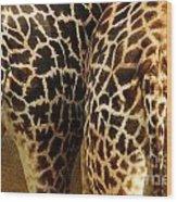 Giraffe Butts 2 Wood Print