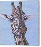 Giraffe Eye To Eye Wood Print