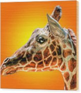 Giraffe Headstudy Wood Print