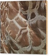 Giraffe Patterns Wood Print