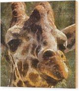 Giraffe Photo Art 01 Wood Print
