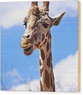 Giraffe Speak Wood Print