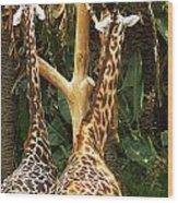 Giraffes In Love Wood Print