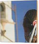 Girl Feather Headdress Wood Print