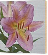 Girosa Lily Wood Print by Sandy Keeton