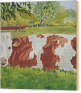 Give Me Moooore Shade Wood Print by Mary Ellen Mueller Legault