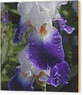 Giverny Iris Wood Print