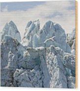 Glacial Flight Wood Print by Vicki Jauron