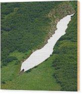 Glacier 13 Wood Print